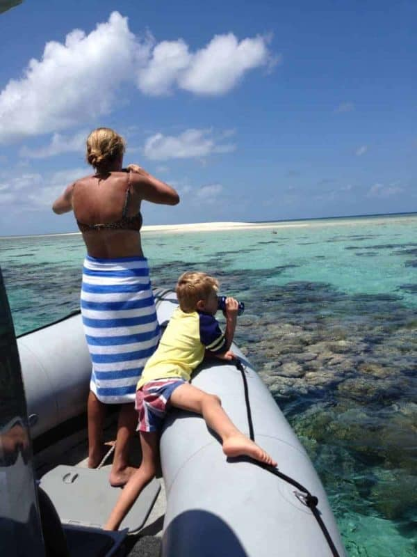 great barrier reef tours from port douglas port douglas reef tours snorkel scuba dive great barrier reef low isles snapper island undine cay spearfish stand up paddle board