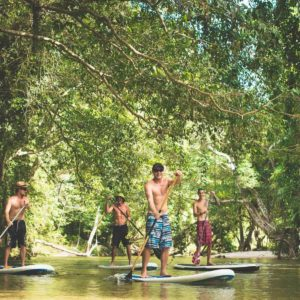 Magical rainforest stand-up paddle session with Windswell Kitesurfing, Port Douglas
