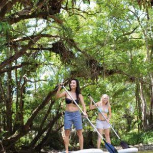 daintree rainforest tours sup mossman river