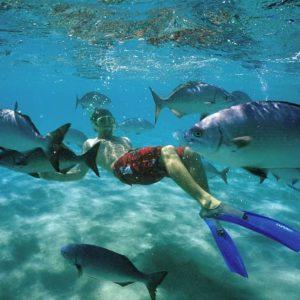 spearfishing-windswell-kitesurfing-port-douglas-australia-02
