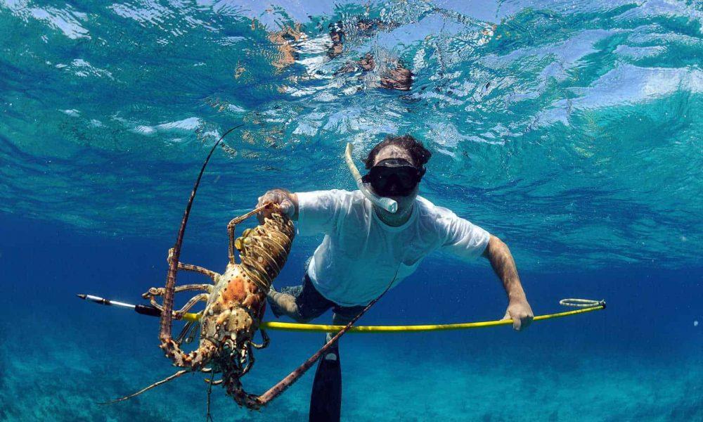 spearfishing-windswell-kitesurfing-port-douglas-australia-01